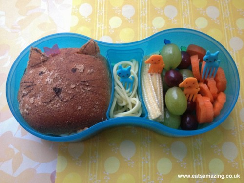 Eats Amazing - Cat & Dog lunch in TUMTUM lunch set