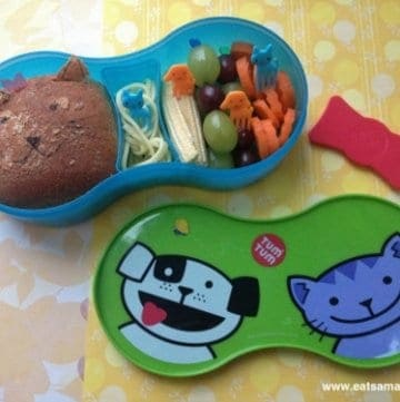 New Lunch Box – TUMTUM Trainee Lunch Set