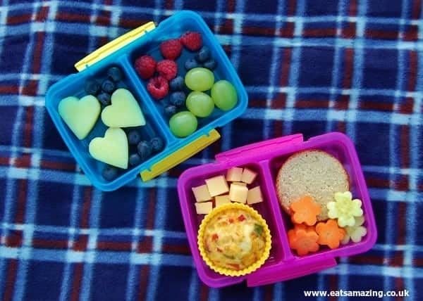 Eats Amazing - Pack individual portions for children to eat on a picnic - no arguing over the last sandwich