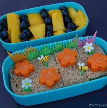 Bee Themed Lunches For My Boys