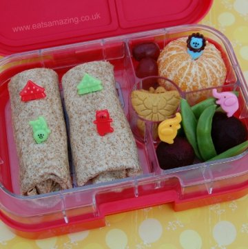 Simple Wrap Lunch and Yumbox Panino Review