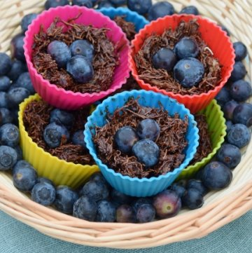 Dairy Free Chocolate Nests Recipe