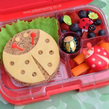 Ladybug Bento Lunch from Eats Amazing with easy ladybug sandwich - healthy fun food for kids from Eats Amazing UK