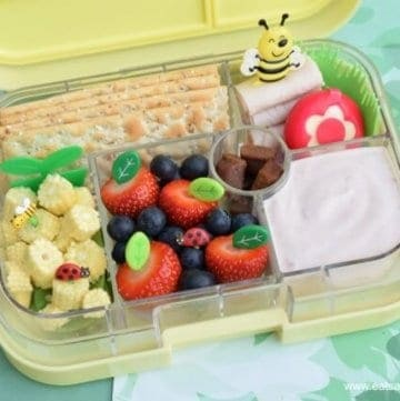 4 Garden Themed Bento Lunch Ideas