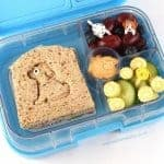 Cat & Dog Themed Lunch Ideas
