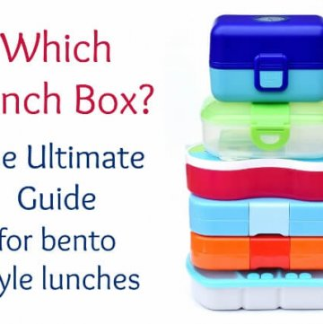 How to Make a Bento – Which Lunch Box?