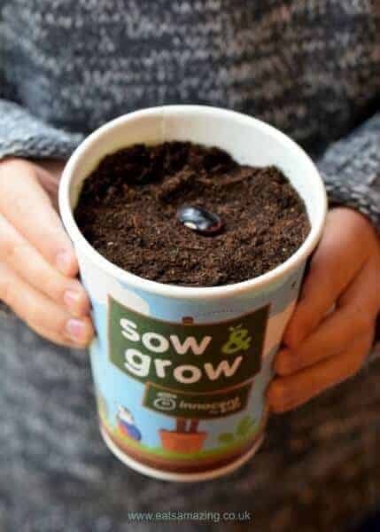 Get kids growing their own vegetables to encourage healthy eating - all about the Sow and Grow project