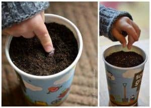 Sow & Grow – Growing Food with Kids