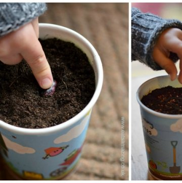 Get kids growing their own vegetables to encourage healthy eating - Sow and Grow project