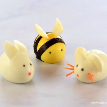 Cute and Easy Boiled Egg Animals