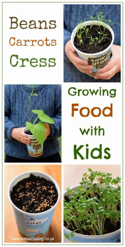 Growing food with kids - how to grow cress, runner beans and baby carrots - fun and easy gardening project for kids to grow their own food