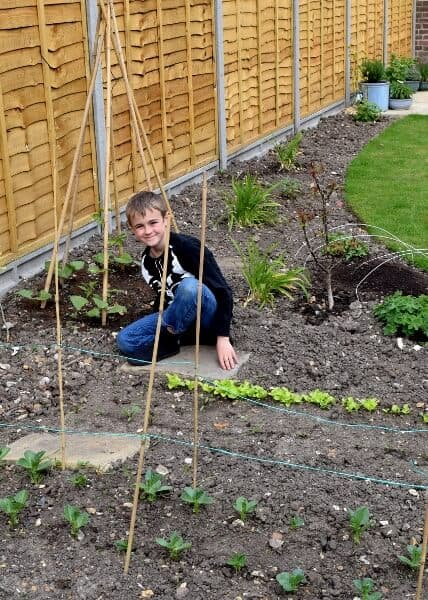 12 brilliant reaasons to grow food with kids - Eats Amazing UK
