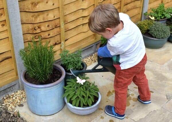 12 brilliant reaasons to grow food with kids - Eats Amazing