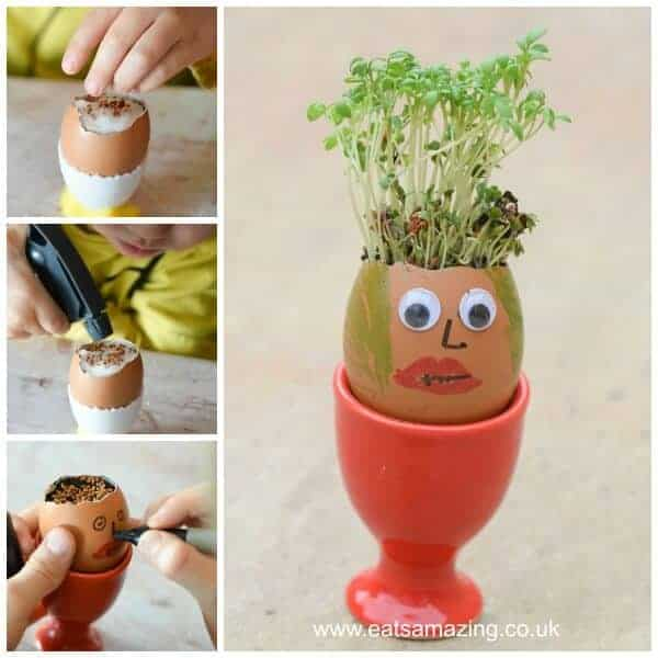 How to grow cress in egg shells with egg head funny face decorations - fun gardening activity for kids from Eats Amazing UK