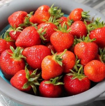 How to grow your own strawberries with kids - guest post from What the Redhead Said for Eats Amazing UK