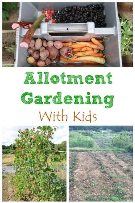 What are the benefits of growing food with kids and how gardening on an family allotment can help encourage healthy eating - Eats Amazing UK