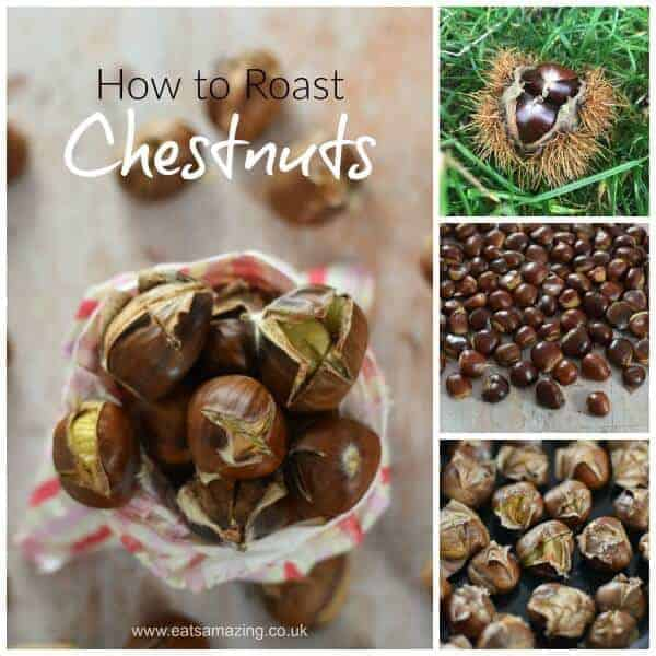 How to pick and roast sweet chestnuts - foraging with kids - Eats Amazing UK