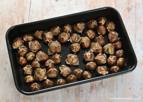 How to roast sweet chestnuts - everything you need to know about picking and roasting chestnuts - Autumn foraging with kids - Eats Amazing UK
