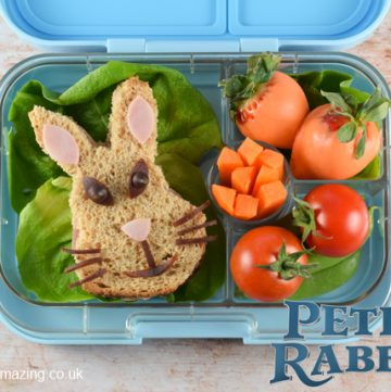 Peter Rabbit Themed Bento Lunch