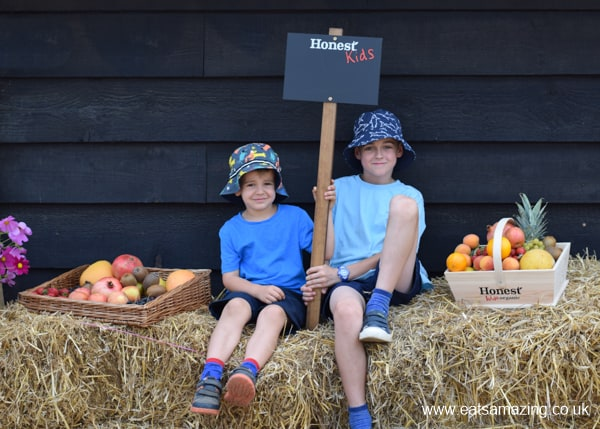 Boys visit to an organic farm with Honest Kids