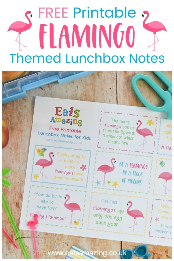Super cute FREE printable Flamingo themed lunchbox notes for kids - a fun lunchbox surprise for back to school with jokes and fun facts #EatsAmazing #lunchbox #backtoschool #lunchboxnotes #schoollunch #lunchnotes #kidsfood #funfood #bento #packedlunch #printable #freeprintable #jokes #funfacts #facts