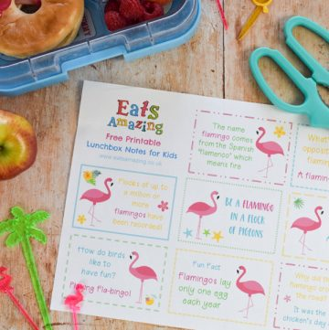 Fun Flamingo Themed Lunchbox Notes for Kids