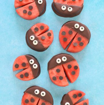 Fun ladybug food idea - these cute watermelon ladybirds are perfect for healthy kids party food and snacks
