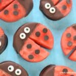 How to make cute watermelon ladybugs - this fun food idea for kids is perfect for summer party food and snacks