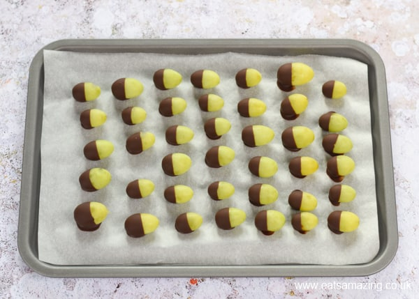 Healthy fun Food for kids - how to make Grape Acorns - set chocolate after chilling