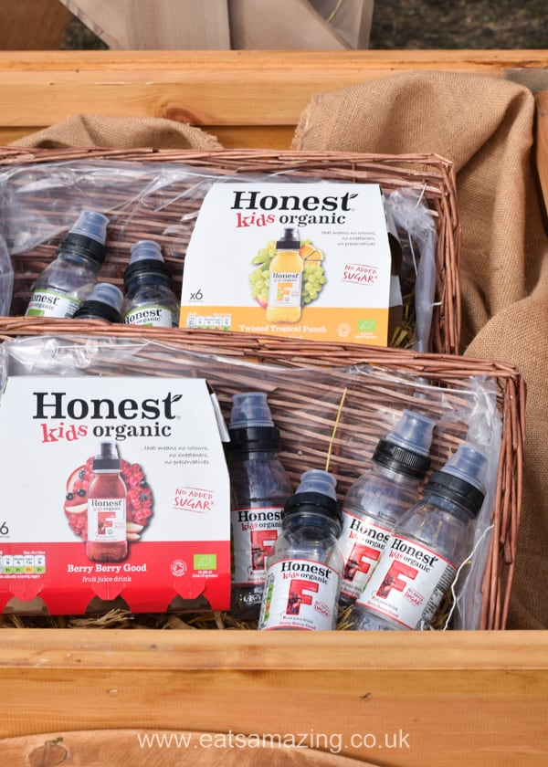 Honest Kids Drinks at the Go Organic Festival