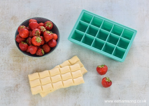 How to make white chocolate covered strawberries in an ice cube tray - ingredients and equipment