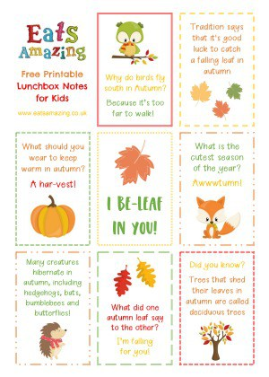 Autumn themed FREE Printable Lunchbox Notes for kids - head over to the blog post to download and print your own set