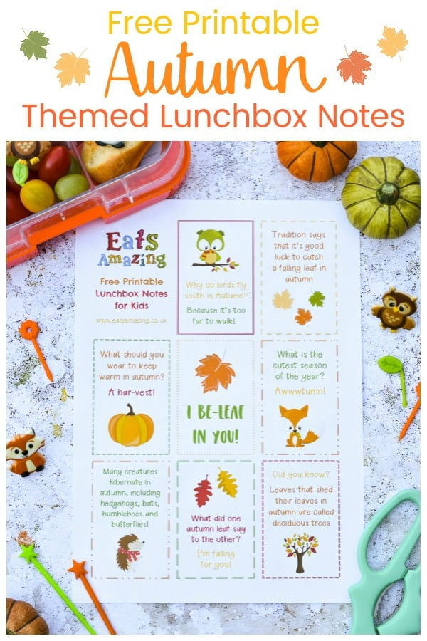 Download your FREE printable Autumn themed lunchbox notes for kids - perfect for popping in lunch boxes and school bags #EatsAmazing #lunchbox #backtoschool #lunchboxnotes #schoollunch #lunchnotes #kidsfood #funfood #bento #packedlunch #printable #freeprintable #jokes #funfacts #facts #autumn #fall