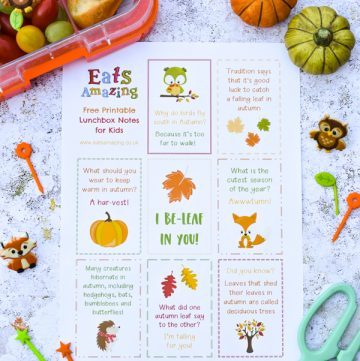 FREE Autumn Themed Printable Lunchbox Notes