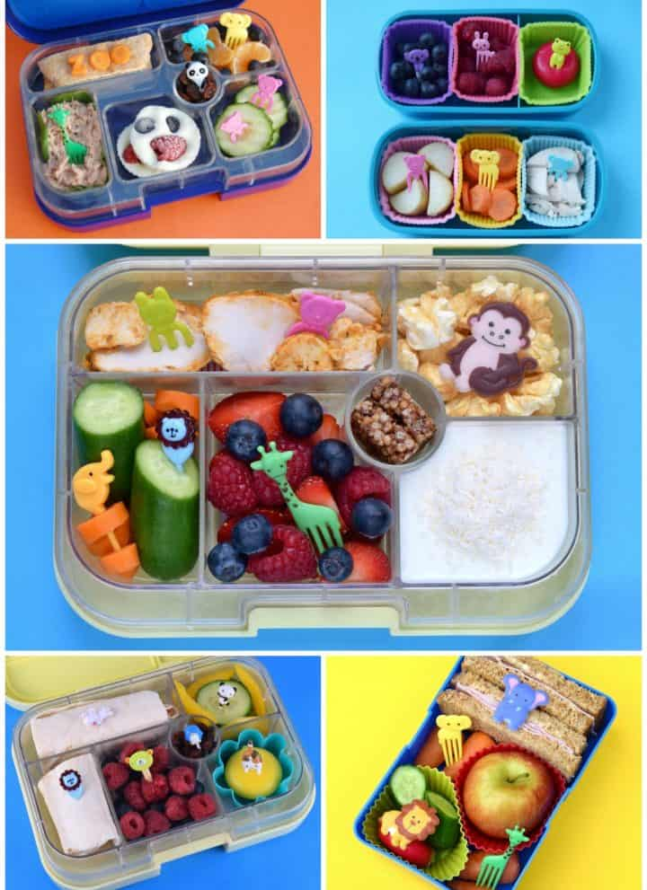 A whole week of fun and easy zoo themed packed lunches for kids - easy bento box ideas for school lunches