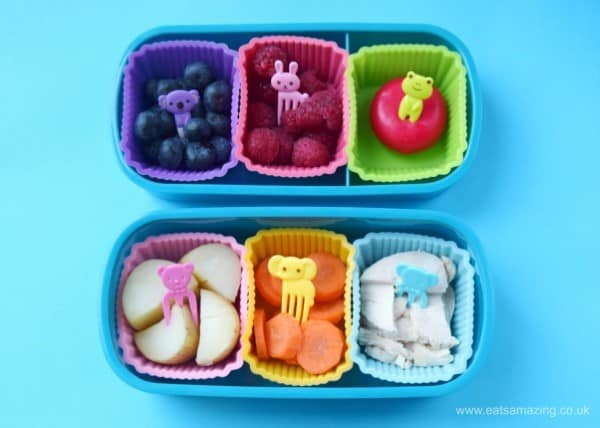 Fun and easy zoo themed packed lunches for kids - lunch two a rainbow of nibbles