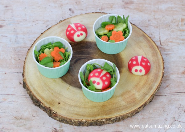 How to make a cute garden themed mini side salad for kids - step 4 finish each salad with a cheese ladybird
