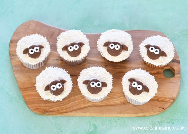Super cute and easy sheep cupcakes recipe with coconut topping and chocolate button faces