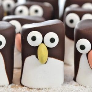 fun animal themed recipes for kids