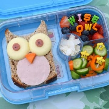 Easy Owl Sandwich & Bento Lunch