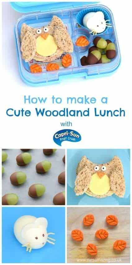 How to make a woodland themed packed lunch – fun and healthy kids lunch idea for a special occasion from Eats Amazing UK